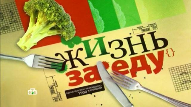 «Жизнь за еду».«Жизнь за еду».НТВ.Ru: новости, видео, программы телеканала НТВ