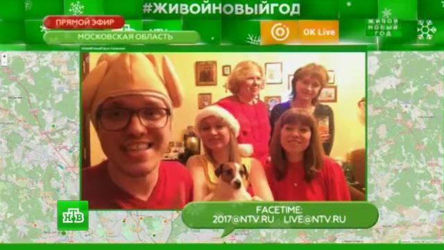#ЖивойНовыйГод: молодой человек из Балашихи поделился рецептом идеального Нового года.НТВ.Ru: новости, видео, программы телеканала НТВ