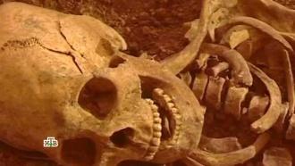 «Загадочные черепа или опыты над человечеством?».«Загадочные черепа или опыты над человечеством?».НТВ.Ru: новости, видео, программы телеканала НТВ