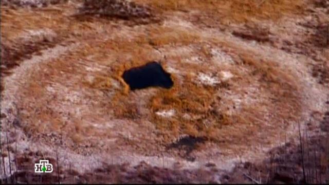 «Север. Загадки древних цивилизаций?».«Север. Загадки древних цивилизаций?».НТВ.Ru: новости, видео, программы телеканала НТВ