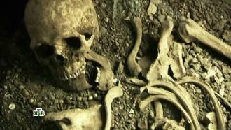«Курская область. Люди гибнут за металл?».«Курская область. Люди гибнут за металл?».НТВ.Ru: новости, видео, программы телеканала НТВ