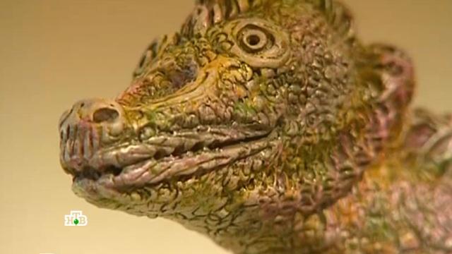 «Новгородская область. Среда обитания крокодилов?».«Новгородская область. Среда обитания крокодилов?».НТВ.Ru: новости, видео, программы телеканала НТВ