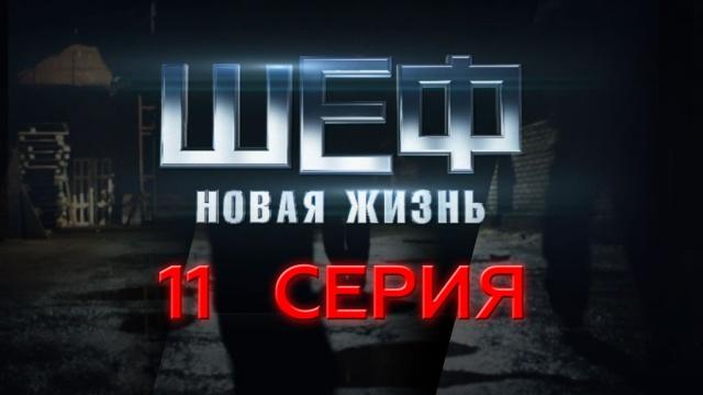 11-я — 14-я серии.11-я серия.НТВ.Ru: новости, видео, программы телеканала НТВ