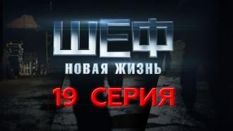 19-я – 22-я серия.19-я серия.НТВ.Ru: новости, видео, программы телеканала НТВ