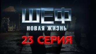 23-я – 26-я серии.23-я серия.НТВ.Ru: новости, видео, программы телеканала НТВ