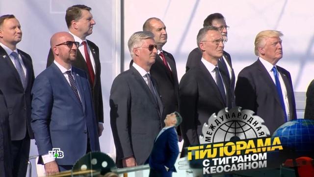 Агент Рыжий втылу врага: саммит НАТО в«Международной пилораме».НТВ.Ru: новости, видео, программы телеканала НТВ
