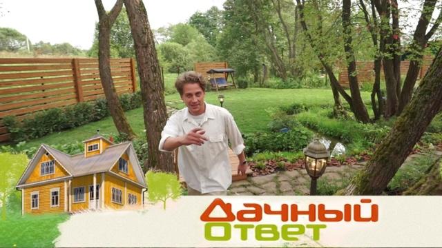 «Дачный ответ» на любой дачный вопрос— вновом сезоне по воскресеньям на НТВ.НТВ.Ru: новости, видео, программы телеканала НТВ