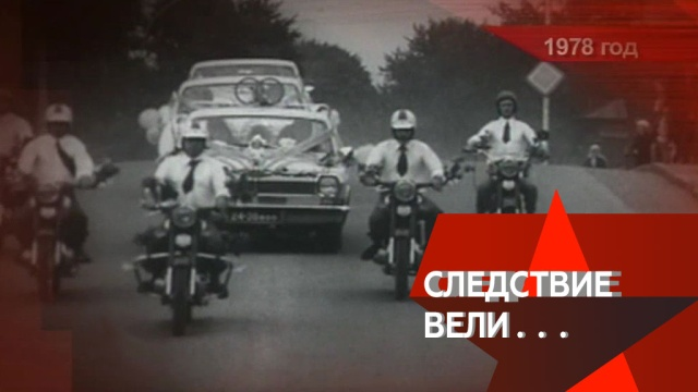 «Слишком горько!».«Слишком горько!».НТВ.Ru: новости, видео, программы телеканала НТВ