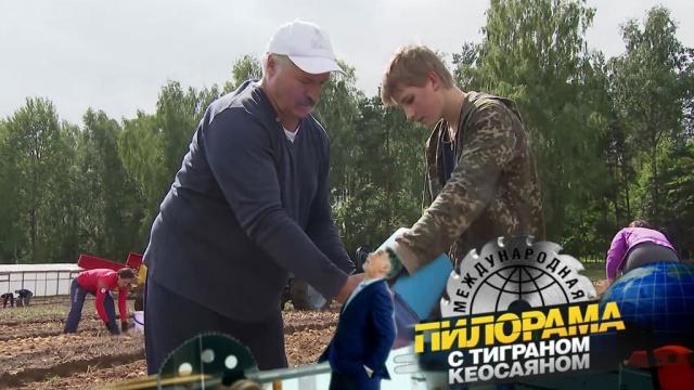 Вожаки на картошке: Лукашенко-отец иЛукашенко-птенец собрали рекордные 105тонн бульбы.НТВ.Ru: новости, видео, программы телеканала НТВ