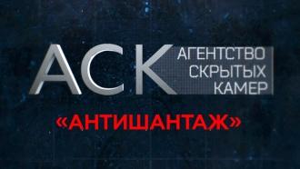 «Антишантаж».«Антишантаж».НТВ.Ru: новости, видео, программы телеканала НТВ