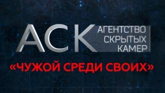 «Чужой среди своих».«Чужой среди своих».НТВ.Ru: новости, видео, программы телеканала НТВ