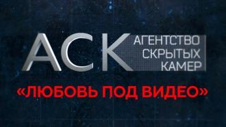 «Любовь под видео».«Любовь под видео».НТВ.Ru: новости, видео, программы телеканала НТВ