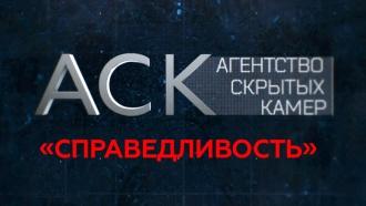 «Справедливость».«Справедливость».НТВ.Ru: новости, видео, программы телеканала НТВ