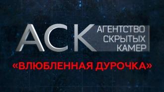 «Влюбленная дурочка».«Влюбленная дурочка».НТВ.Ru: новости, видео, программы телеканала НТВ