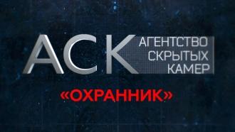«Охранник».«Охранник».НТВ.Ru: новости, видео, программы телеканала НТВ