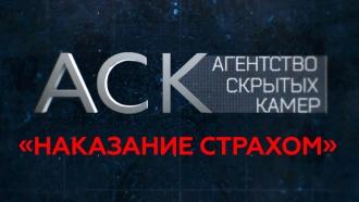 «Наказание страхом».«Наказание страхом».НТВ.Ru: новости, видео, программы телеканала НТВ