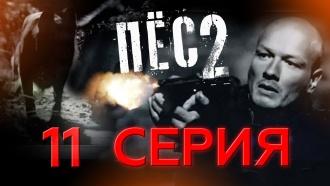 «Ставки сделаны».НТВ.Ru: новости, видео, программы телеканала НТВ