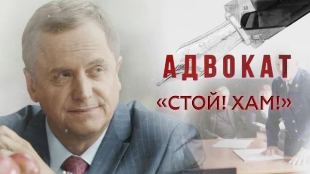 «Стой! Хам!».«Стой! Хам!».НТВ.Ru: новости, видео, программы телеканала НТВ
