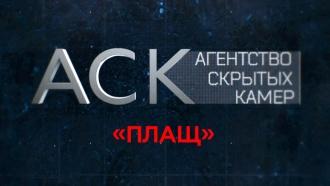 «Плащ».«Плащ».НТВ.Ru: новости, видео, программы телеканала НТВ
