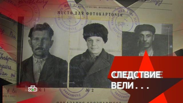 «Опасный постоялец».«Опасный постоялец».НТВ.Ru: новости, видео, программы телеканала НТВ