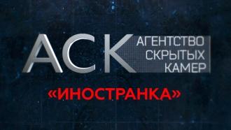 «Иностранка».«Иностранка».НТВ.Ru: новости, видео, программы телеканала НТВ