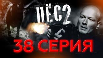 38-я серия.38-я серия.НТВ.Ru: новости, видео, программы телеканала НТВ