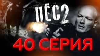 40-я серия.40-я серия.НТВ.Ru: новости, видео, программы телеканала НТВ
