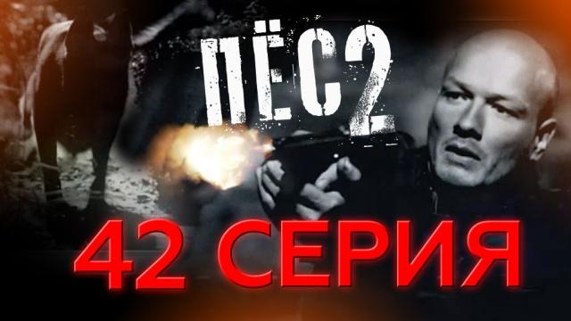 42-я серия.42-я серия.НТВ.Ru: новости, видео, программы телеканала НТВ