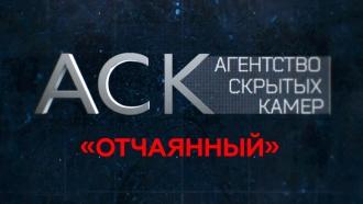 «Отчаянный».«Отчаянный».НТВ.Ru: новости, видео, программы телеканала НТВ