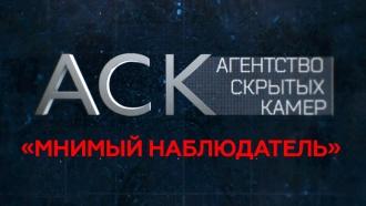 «Мнимый наблюдатель».«Мнимый наблюдатель».НТВ.Ru: новости, видео, программы телеканала НТВ
