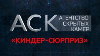 «Киндер-сюрприз».«Киндер-сюрприз».НТВ.Ru: новости, видео, программы телеканала НТВ