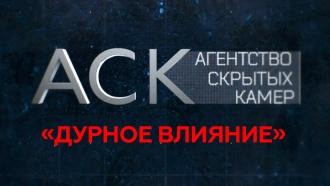 «Дурное влияние».«Дурное влияние».НТВ.Ru: новости, видео, программы телеканала НТВ