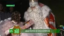 Дед Мороз иВиктория Тарасова поздравили детей инавестили многодетную семью вКрасноярске