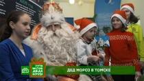 Чудеса, подарки иисполнение желаний: Дед Мороз иНТВ приехали вТомск