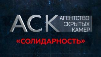 «Солидарность».«Солидарность».НТВ.Ru: новости, видео, программы телеканала НТВ