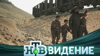 Русские вхалифате: зачем они туда едут иестьли шанс вернуться обратно? 7декабря на НТВ— фильм «Забери меня, мама!» из цикла <nobr>«НТВ-видение»</nobr>