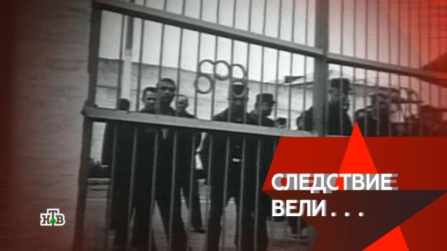 «Ножом ивилкой».«Ножом ивилкой».НТВ.Ru: новости, видео, программы телеканала НТВ