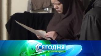 «Сегодня в<nobr>Санкт-Петербурге»</nobr>. 24ноября 2017года. 16:15