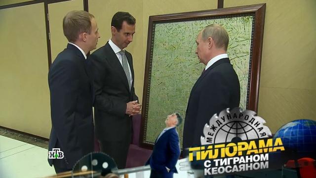 Сирийские обои врамке, портфель схакерской кнопкой ипадение рейтинга Эрдогана: чем запомнились переговоры вСочи?НТВ.Ru: новости, видео, программы телеканала НТВ
