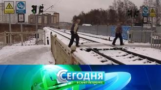 «Сегодня в<nobr>Санкт-Петербурге»</nobr>. 1декабря 2017года. 16:15