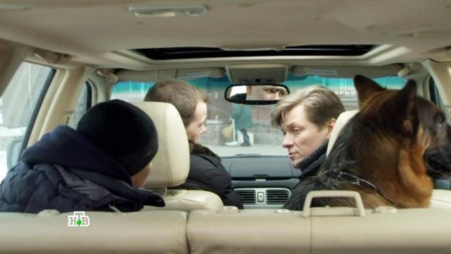 «Курьеры».«Курьеры».НТВ.Ru: новости, видео, программы телеканала НТВ