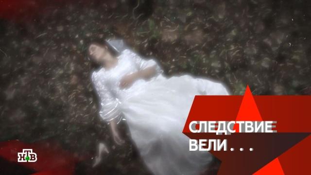 «Невеста под кроватью».«Невеста под кроватью».НТВ.Ru: новости, видео, программы телеканала НТВ