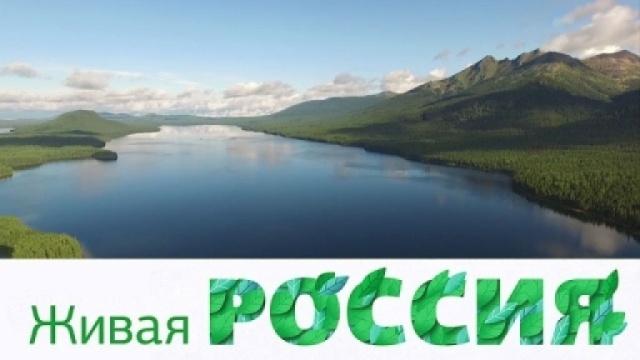 «Живая Россия».«Живая Россия».НТВ.Ru: новости, видео, программы телеканала НТВ