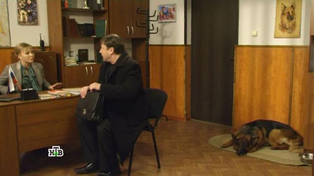 «Неочевидный мотив».«Неочевидный мотив».НТВ.Ru: новости, видео, программы телеканала НТВ