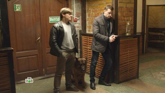 «Трое в лодке и собака».«Трое в лодке и собака».НТВ.Ru: новости, видео, программы телеканала НТВ