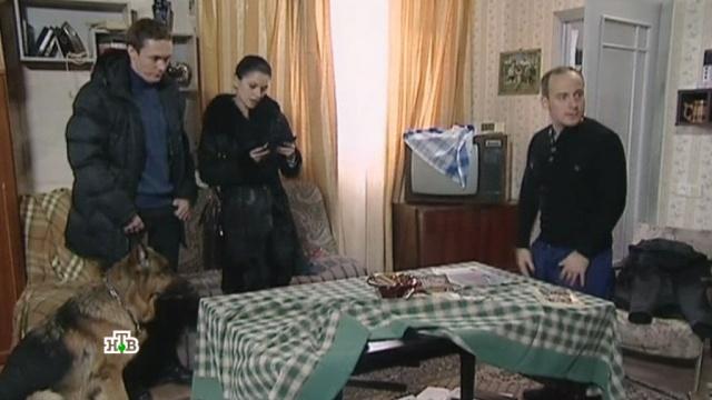 «Экслибрис».«Экслибрис».НТВ.Ru: новости, видео, программы телеканала НТВ