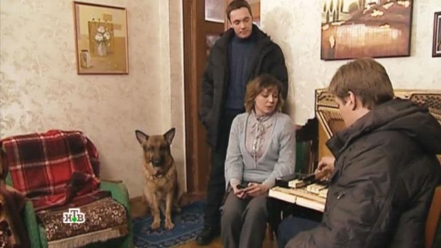 «Охота на пианино».«Охота на пианино».НТВ.Ru: новости, видео, программы телеканала НТВ