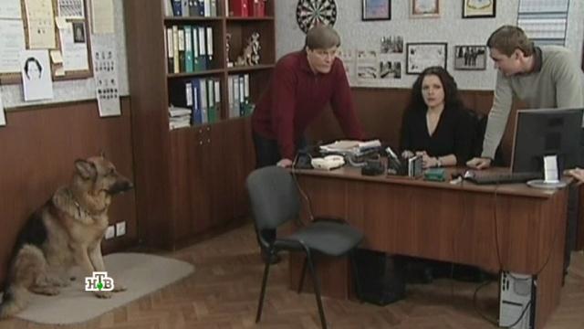 «День донора».«День донора».НТВ.Ru: новости, видео, программы телеканала НТВ