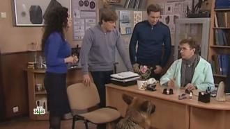 «Собачья жизнь».«Собачья жизнь».НТВ.Ru: новости, видео, программы телеканала НТВ