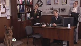 «Нарды».«Нарды».НТВ.Ru: новости, видео, программы телеканала НТВ
